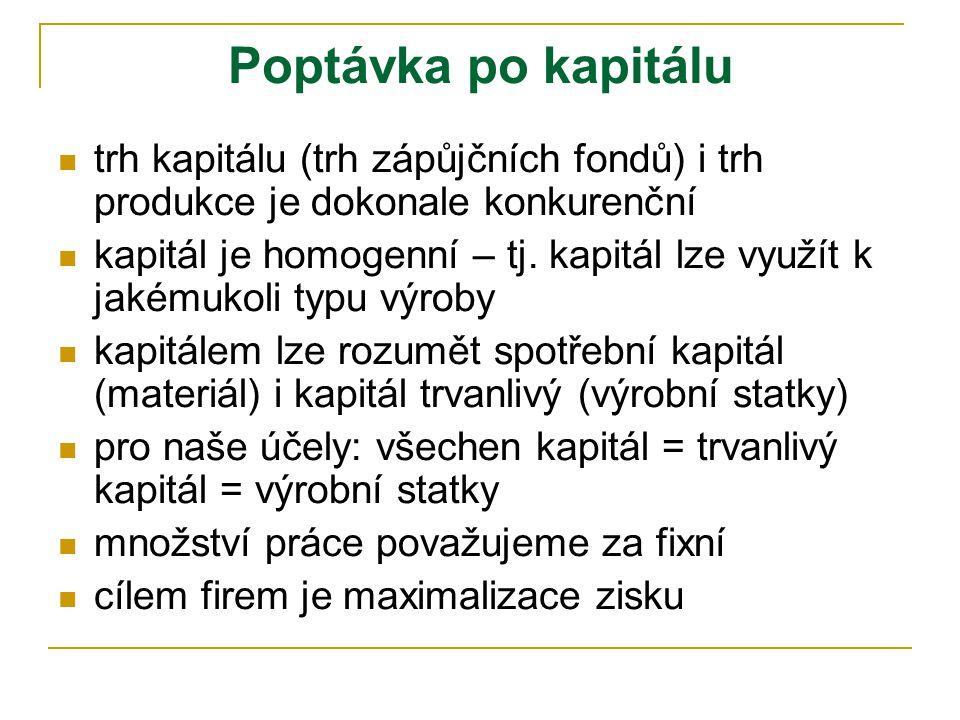 Přednáška č. 11 Trh kapitálu – neoklasický přístup  formování poptávky po kapitálu  odvození poptávky po investicích  formování nabídky úspor  Hay