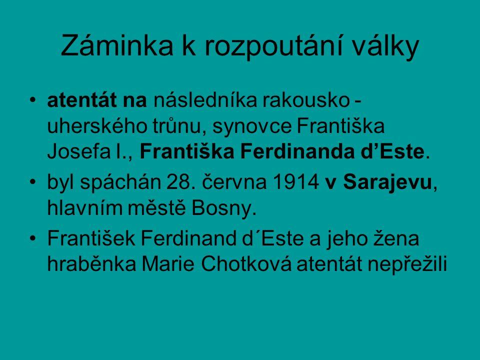 Záminka k rozpoutání války •atentát na následníka rakousko - uherského trůnu, synovce Františka Josefa I., Františka Ferdinanda d'Este. •byl spáchán 2
