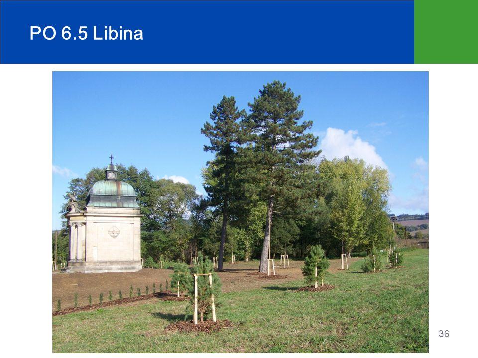 36 PO 6.5 Libina