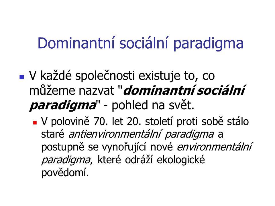 Dominantní sociální paradigma  V každé společnosti existuje to, co můžeme nazvat