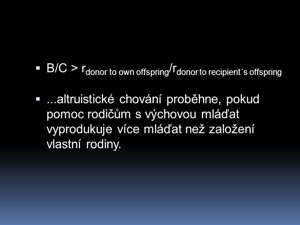 B/C > r donor to own offspring /r donor to recipient´s offspring ...altruistické chování proběhne, pokud pomoc rodičům s výchovou mláďat vyprodukuj