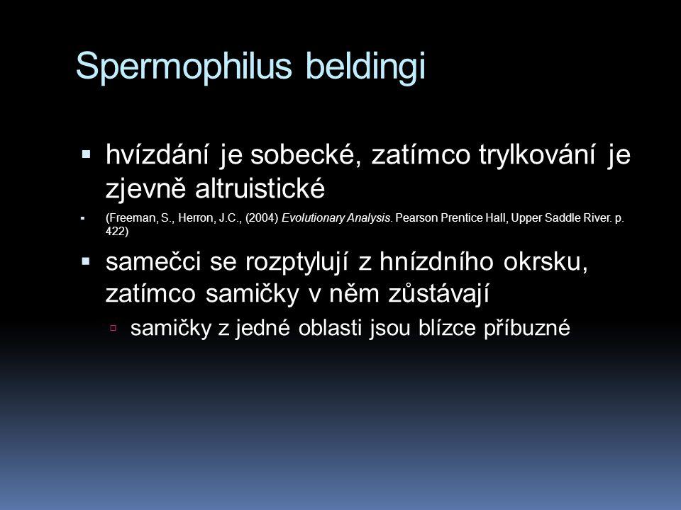 Spermophilus beldingi  hvízdání je sobecké, zatímco trylkování je zjevně altruistické  (Freeman, S., Herron, J.C., (2004) Evolutionary Analysis. Pea