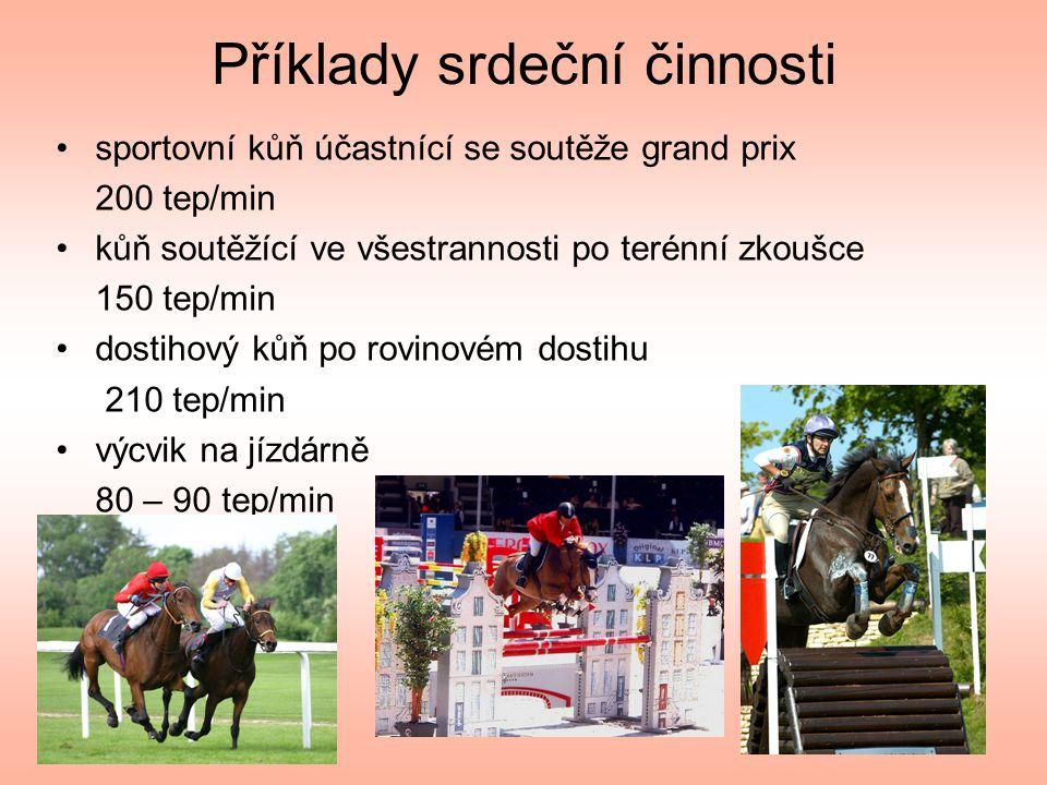 Příklady srdeční činnosti •sportovní kůň účastnící se soutěže grand prix 200 tep/min •kůň soutěžící ve všestrannosti po terénní zkoušce 150 tep/min •dostihový kůň po rovinovém dostihu 210 tep/min •výcvik na jízdárně 80 – 90 tep/min