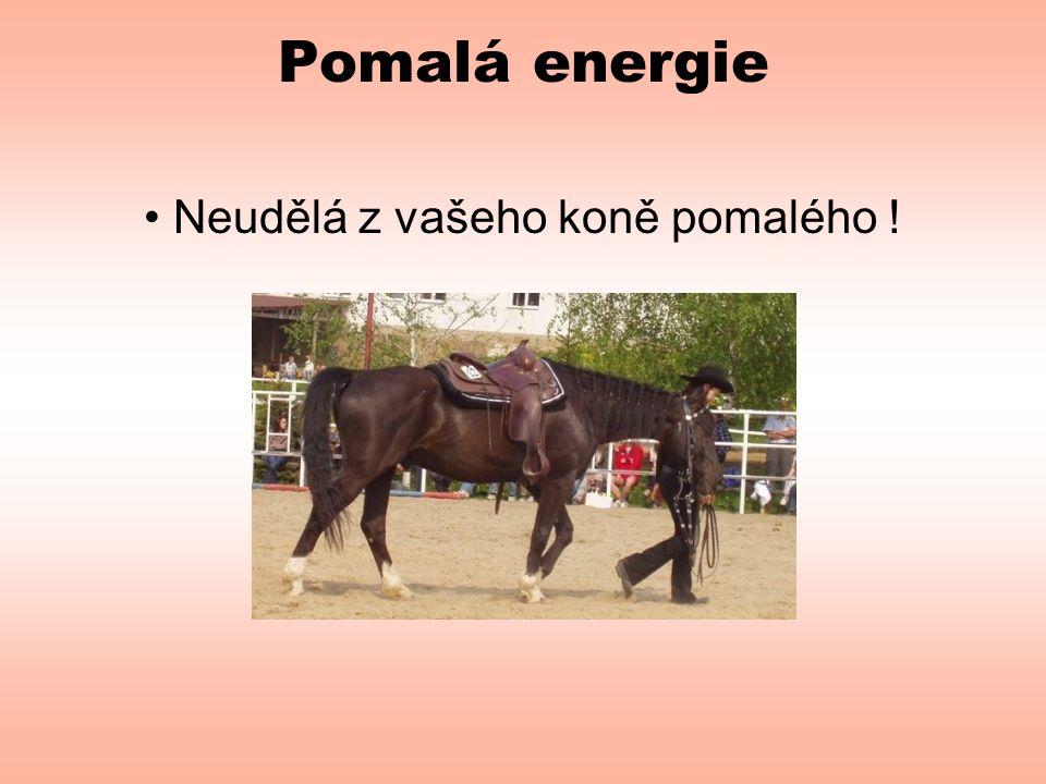 Pomalá energie • Neudělá z vašeho koně pomalého !