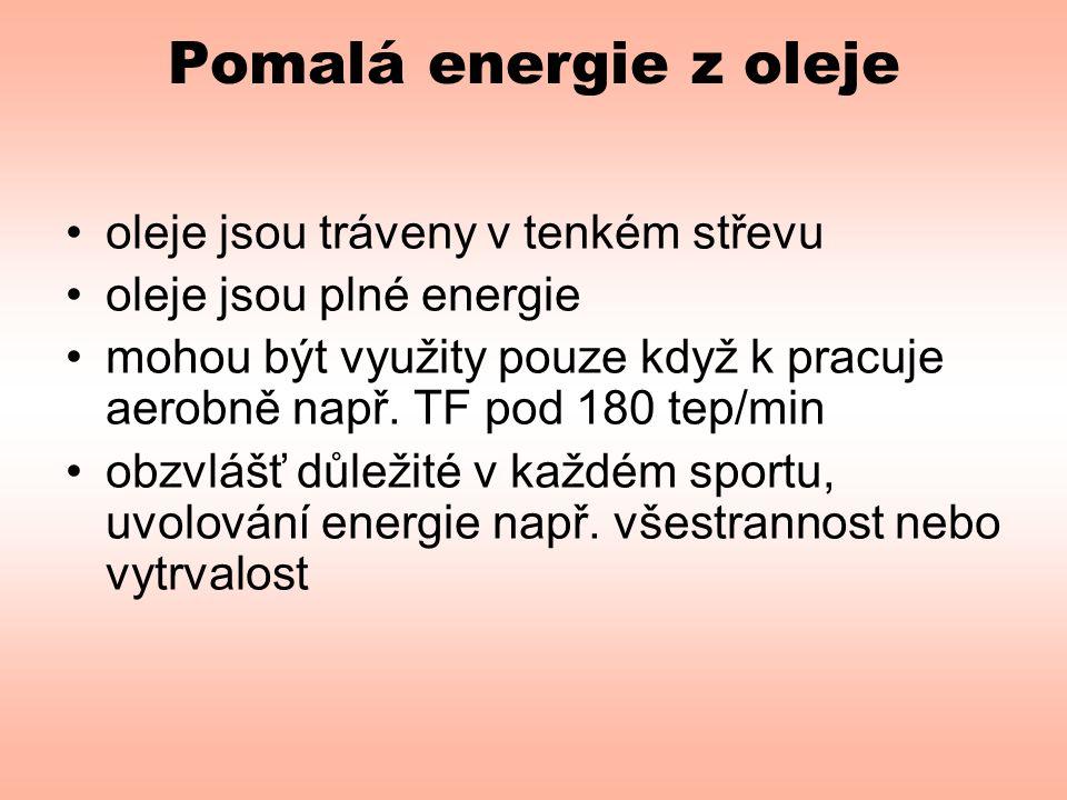 Pomalá energie z oleje •oleje jsou tráveny v tenkém střevu •oleje jsou plné energie •mohou být využity pouze když k pracuje aerobně např.