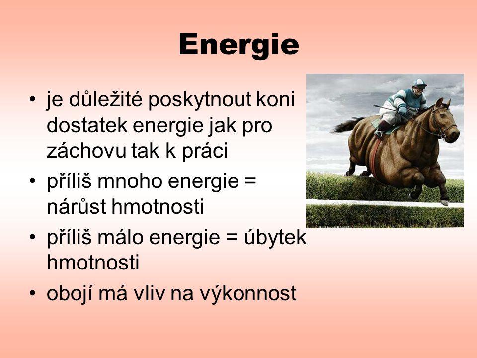 Energie •je důležité poskytnout koni dostatek energie jak pro záchovu tak k práci •příliš mnoho energie = nárůst hmotnosti •příliš málo energie = úbyt