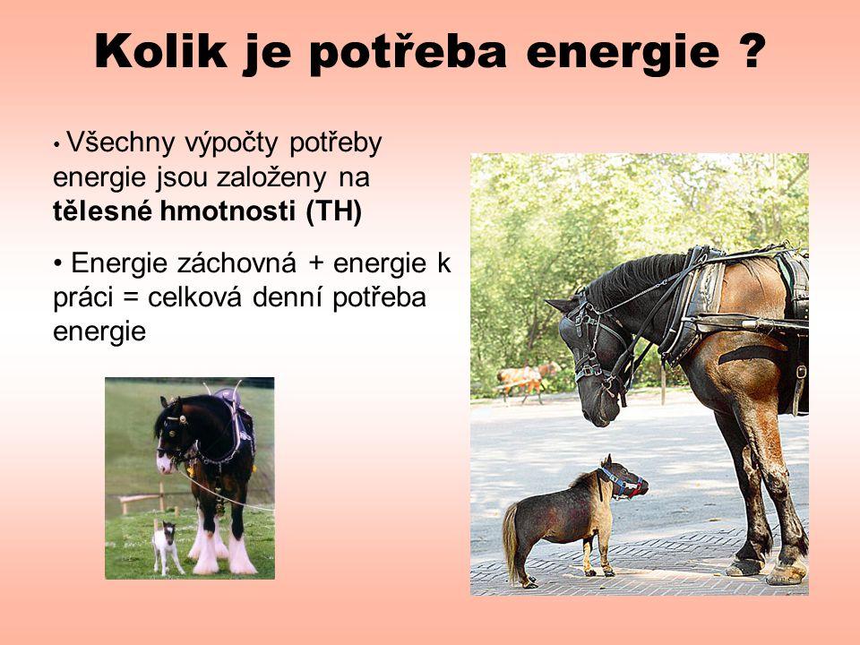 Kolik je potřeba energie ? • Všechny výpočty potřeby energie jsou založeny na tělesné hmotnosti (TH) • Energie záchovná + energie k práci = celková de