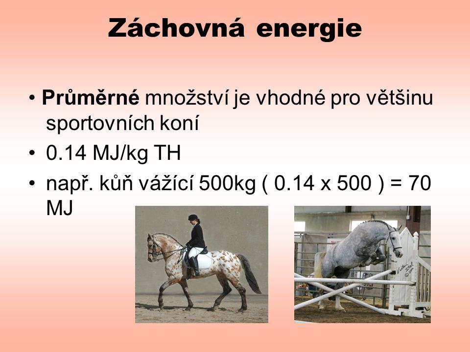 Záchovná energie • Průměrné množství je vhodné pro většinu sportovních koní •0.14 MJ/kg TH •např. kůň vážící 500kg ( 0.14 x 500 ) = 70 MJ