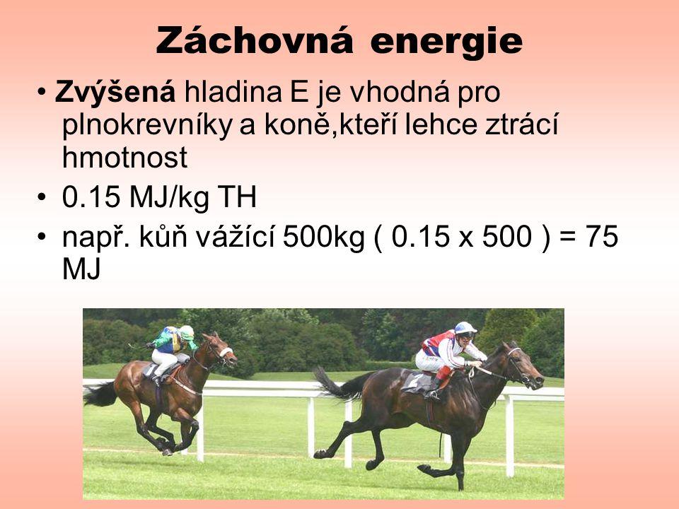 Záchovná energie • Zvýšená hladina E je vhodná pro plnokrevníky a koně,kteří lehce ztrácí hmotnost •0.15 MJ/kg TH •např. kůň vážící 500kg ( 0.15 x 500