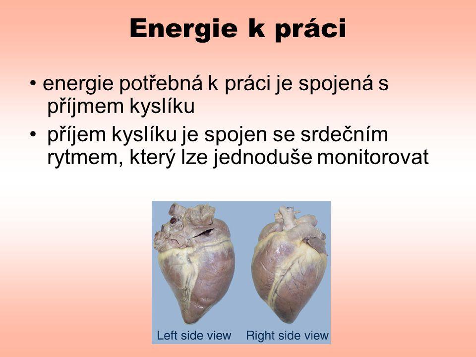 Energie k práci • energie potřebná k práci je spojená s příjmem kyslíku •příjem kyslíku je spojen se srdečním rytmem, který lze jednoduše monitorovat