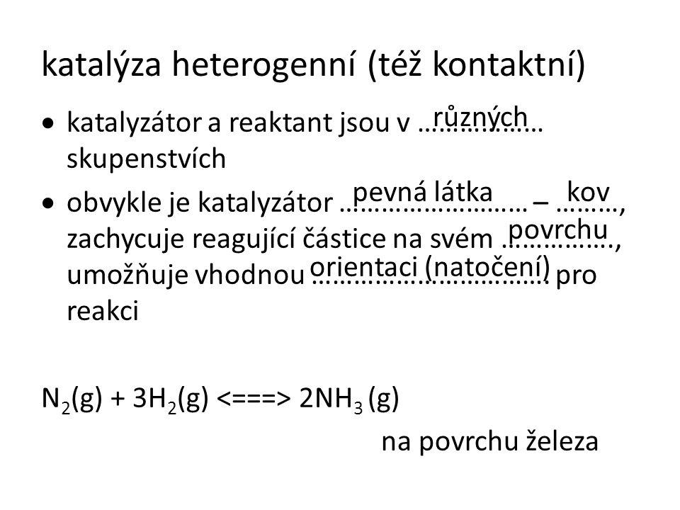 katalýza heterogenní (též kontaktní)  katalyzátor a reaktant jsou v ……………… skupenstvích  obvykle je katalyzátor ……………………… – ………, zachycuje reagující