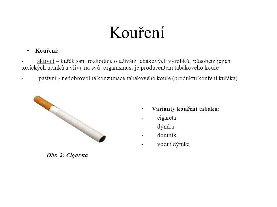 •Varianty kouření tabáku: - cigareta - dýmka - doutník - vodní dýmka •Kouření: - aktivní – kuřák sám rozhoduje o užívání tabákových výrobků, působení
