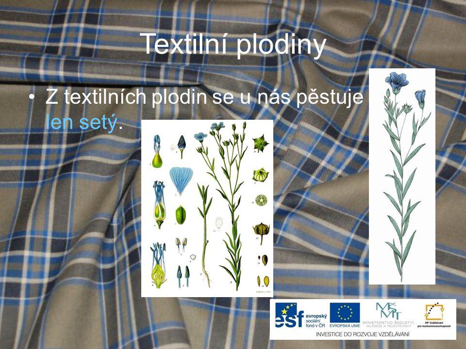 Textilní plodiny •Z textilních plodin se u nás pěstuje len setý.