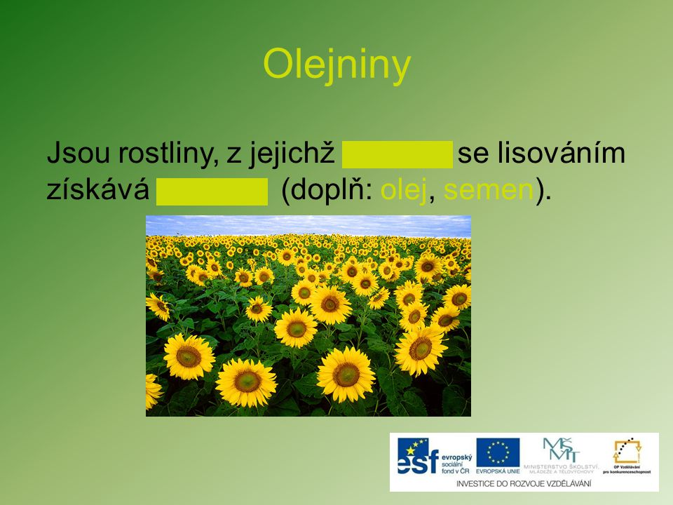 Olejniny Jsou rostliny, z jejichž se lisováním získává (doplň: olej, semen).