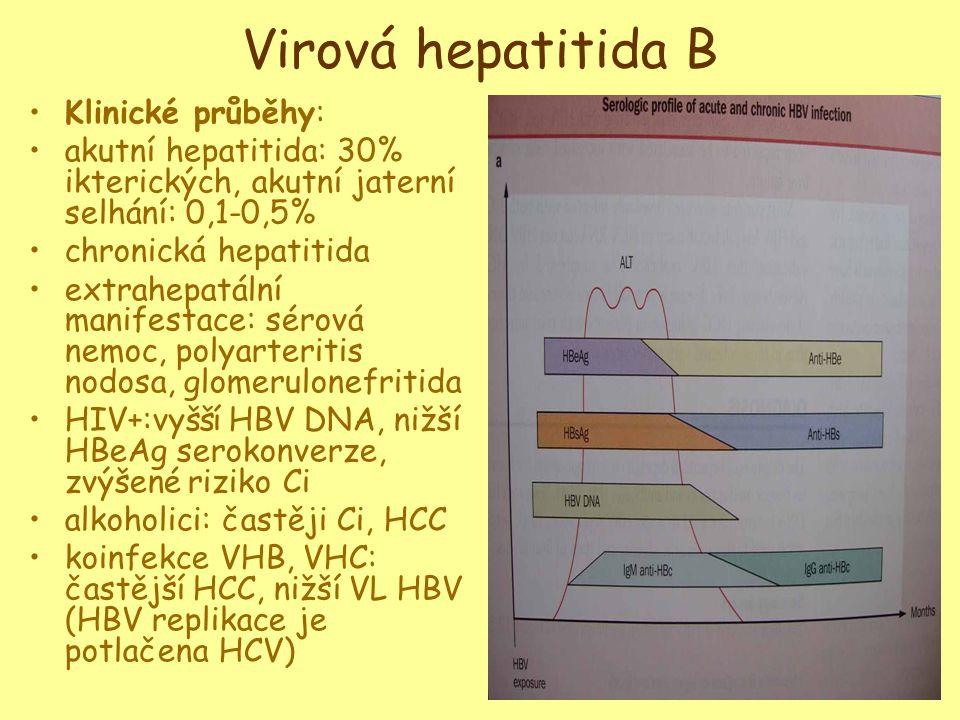 Virová hepatitida B •Klinické průběhy: •akutní hepatitida: 30% ikterických, akutní jaterní selhání: 0,1-0,5% •chronická hepatitida •extrahepatální manifestace: sérová nemoc, polyarteritis nodosa, glomerulonefritida •HIV+:vyšší HBV DNA, nižší HBeAg serokonverze, zvýšené riziko Ci •alkoholici: častěji Ci, HCC •koinfekce VHB, VHC: častější HCC, nižší VL HBV (HBV replikace je potlačena HCV)