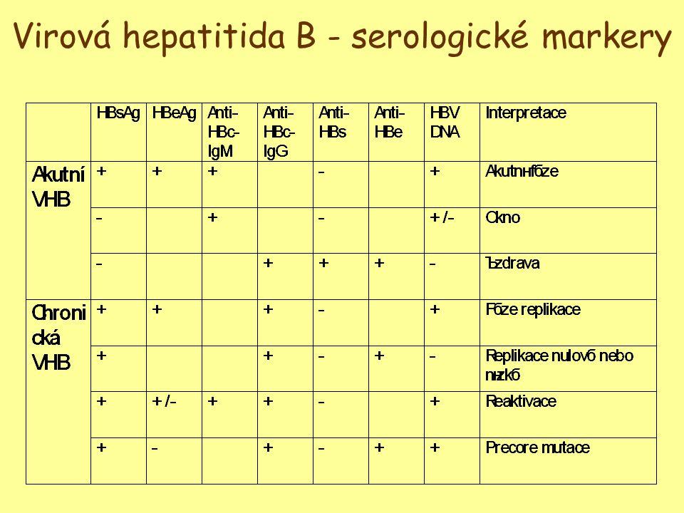 Virová hepatitida B - serologické markery