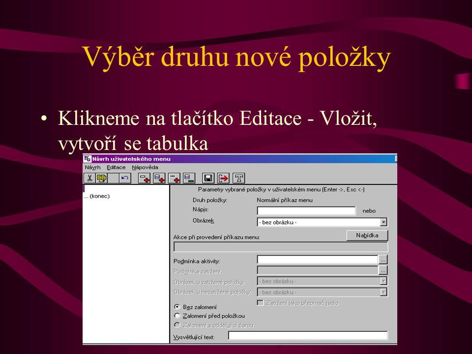Výběr druhu nové položky •Klikneme na tlačítko Editace - Vložit, vytvoří se tabulka