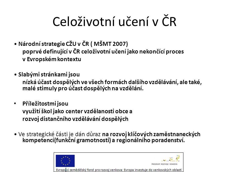 Celoživotní učení v ČR • Národní strategie CŽU v ČR ( MŠMT 2007) poprvé definující v ČR celoživotní učení jako nekončící proces v Evropském kontextu •