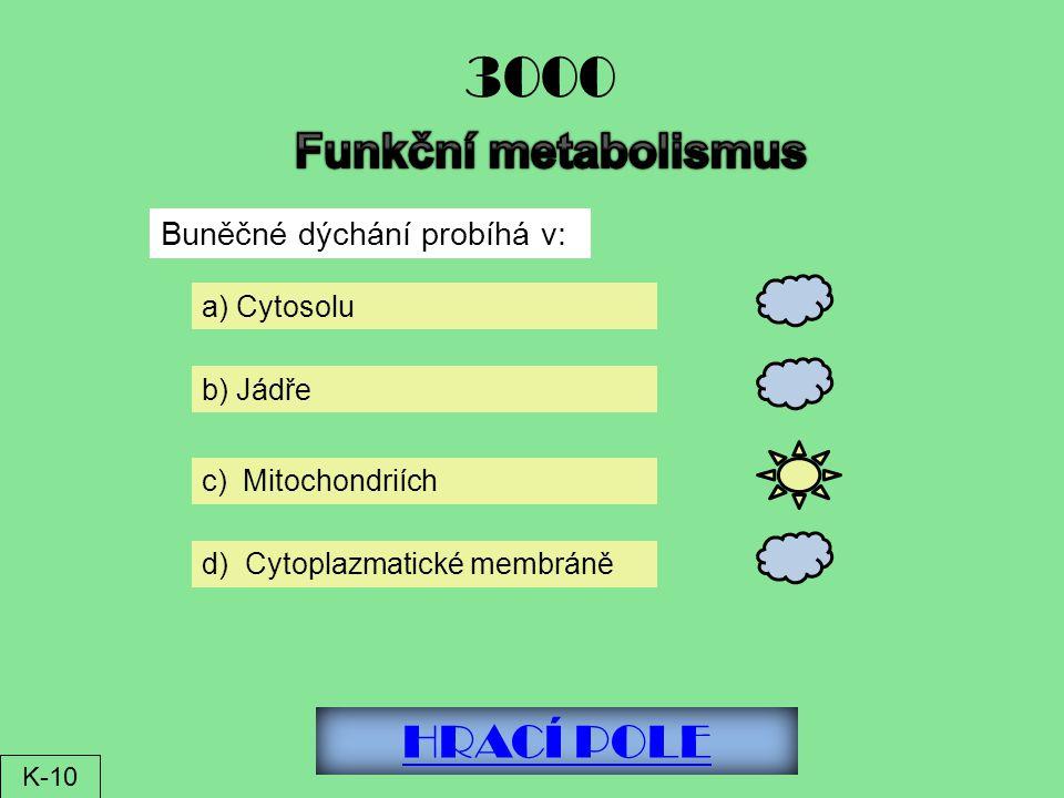 HRACÍ POLE 3000 Buněčné dýchání probíhá v: a) Cytosolu b) Jádře c) Mitochondriích d) Cytoplazmatické membráně K-10