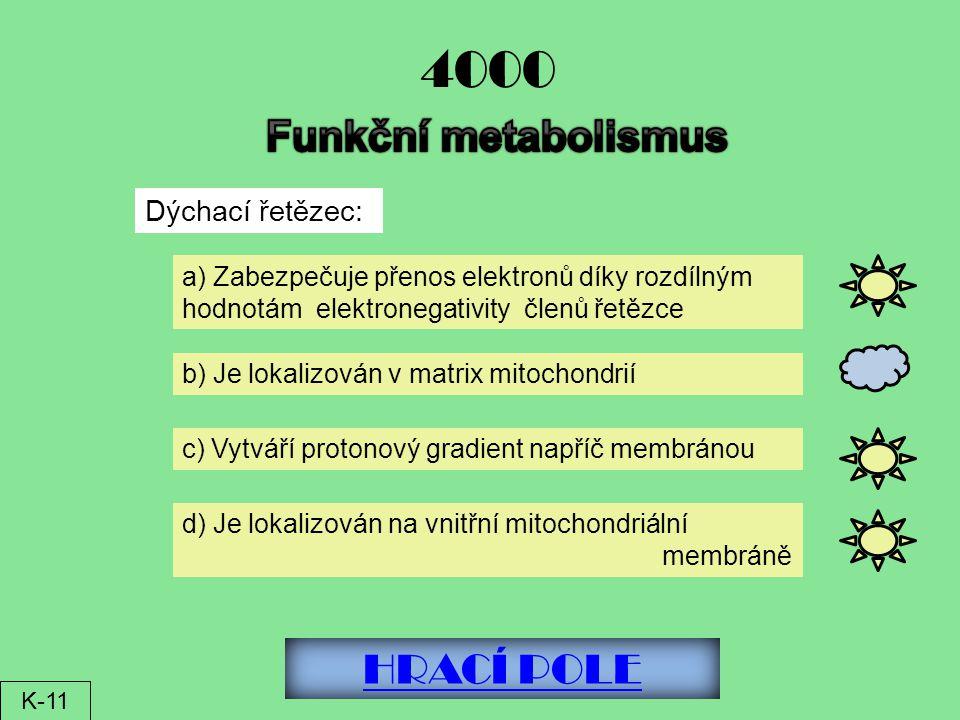 HRACÍ POLE 4000 Dýchací řetězec: a) Zabezpečuje přenos elektronů díky rozdílným hodnotám elektronegativity členů řetězce b) Je lokalizován v matrix mitochondrií c) Vytváří protonový gradient napříč membránou d) Je lokalizován na vnitřní mitochondriální membráně K-11