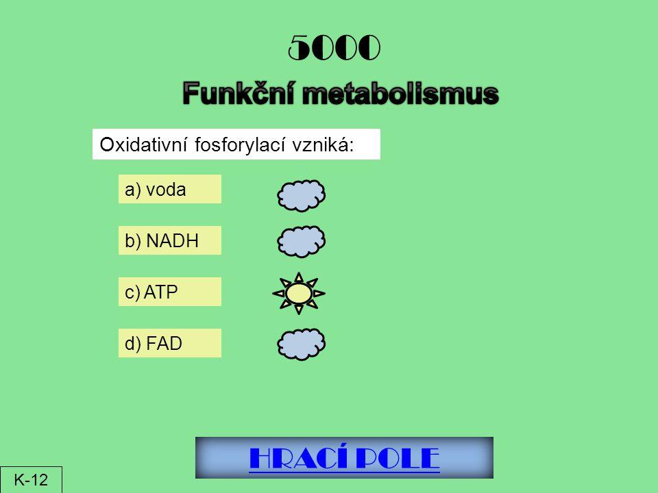 HRACÍ POLE 5000 Oxidativní fosforylací vzniká: a) voda b) NADH c) ATP d) FAD K-12