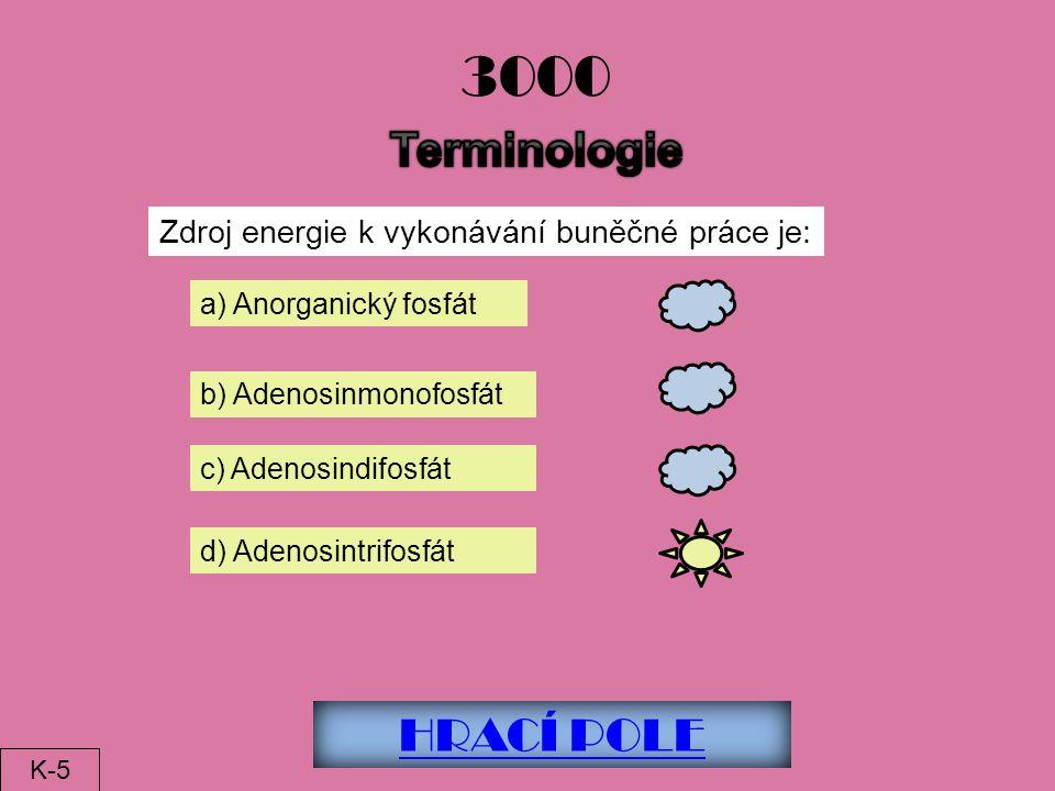 HRACÍ POLE 3000 Zdroj energie k vykonávání buněčné práce je: a) Anorganický fosfát b) Adenosinmonofosfát c) Adenosindifosfát d) Adenosintrifosfát K-5