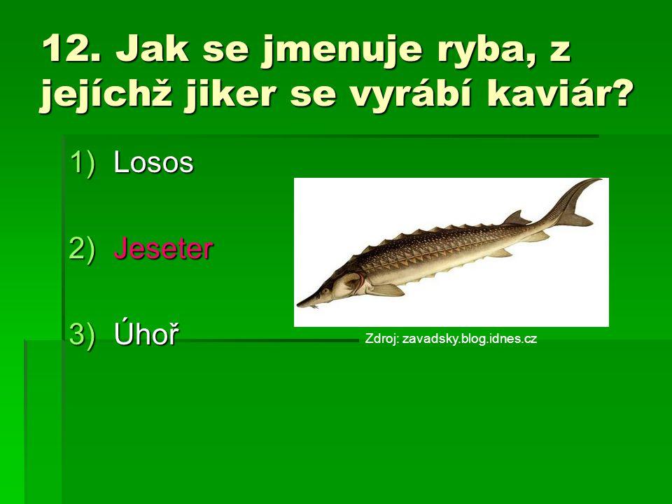 12. Jak se jmenuje ryba, z jejíchž jiker se vyrábí kaviár? 1)Losos 2)Jeseter 3)Úhoř Zdroj: zavadsky.blog.idnes.cz