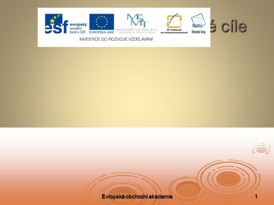 Evropská obchodní akademie1 Projektové cíle