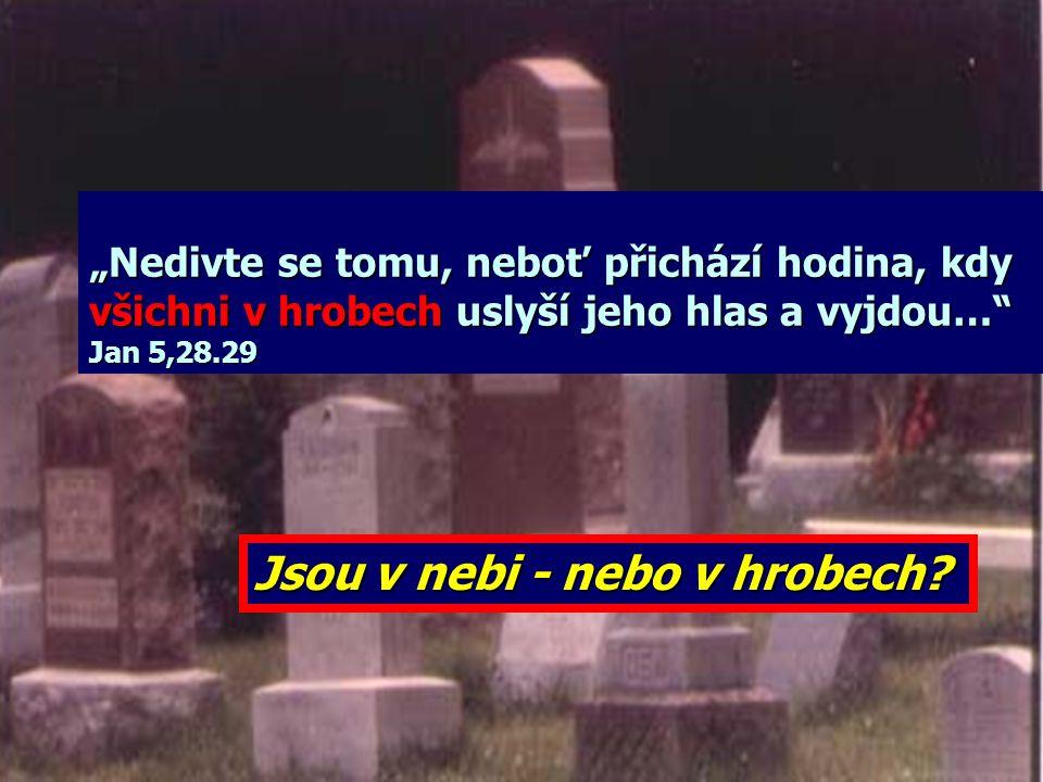 """""""To pověděl a dodal: 'Náš přítel Lazar usnul. Ale jdu ho probudit.' Učedníci mu řekli: 'Pane, spí-li, uzdraví se.' Ježíš mluvil o jeho smrti, ale oni"""