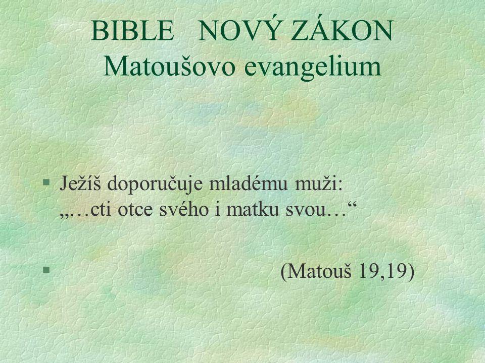 """BIBLE NOVÝ ZÁKON Matoušovo evangelium §Ježíš doporučuje mladému muži: """"…cti otce svého i matku svou… § (Matouš 19,19)"""