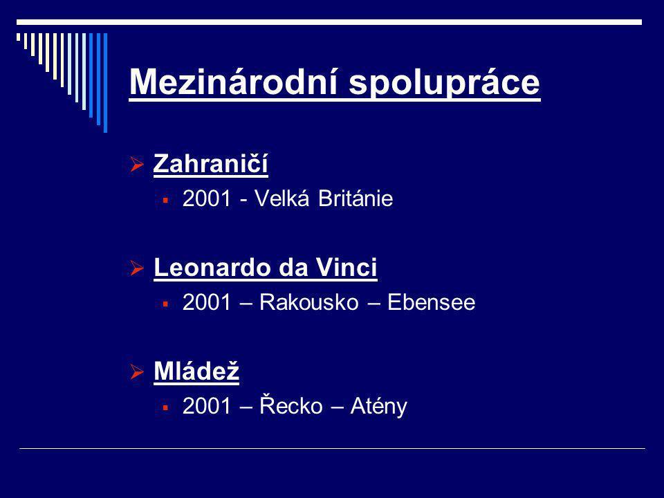 Mezinárodní spolupráce  Zahraničí  2001 - Velká Británie  Leonardo da Vinci  2001 – Rakousko – Ebensee  Mládež  2001 – Řecko – Atény