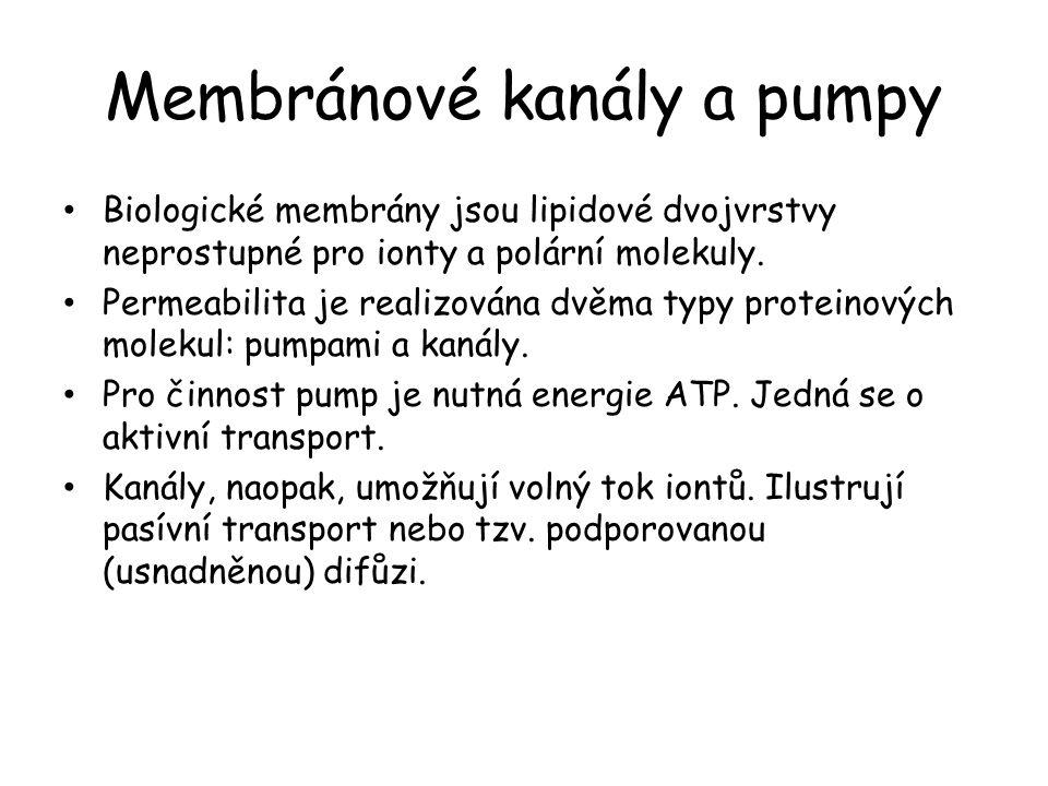 Membránové kanály a pumpy • Biologické membrány jsou lipidové dvojvrstvy neprostupné pro ionty a polární molekuly. • Permeabilita je realizována dvěma