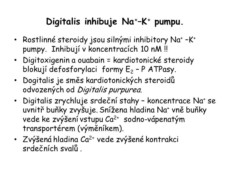 Digitalis inhibuje Na + –K + pumpu. • Rostlinné steroidy jsou silnými inhibitory Na + –K + pumpy. Inhibují v koncentracích 10 nM !! • Digitoxigenin a