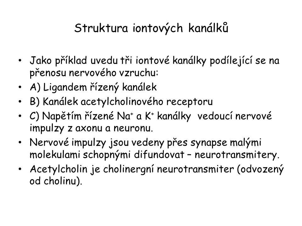 Struktura iontových kanálků • Jako příklad uvedu tři iontové kanálky podílející se na přenosu nervového vzruchu: • A) Ligandem řízený kanálek • B) Kanálek acetylcholinového receptoru • C) Napětím řízené Na + a K + kanálky vedoucí nervové impulzy z axonu a neuronu.