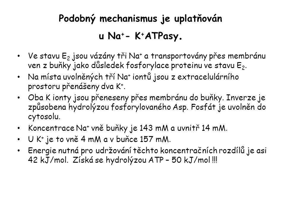 Podobný mechanismus je uplatňován u Na + - K + ATPasy. • Ve stavu E 2 jsou vázány tři Na + a transportovány přes membránu ven z buňky jako důsledek fo