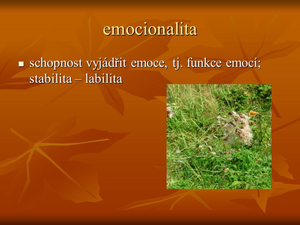 emocionalita  schopnost vyjádřit emoce, tj. funkce emocí; stabilita – labilita