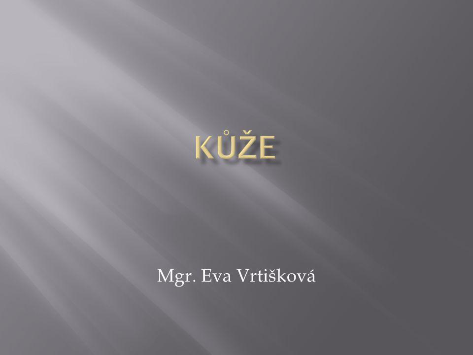 Mgr. Eva Vrtišková