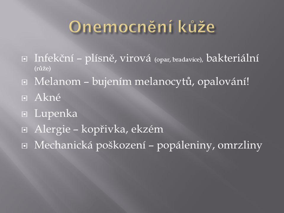  Infekční – plísně, virová (opar, bradavice), bakteriální (růže)  Melanom – bujením melanocytů, opalování!  Akné  Lupenka  Alergie – kopřivka, ek