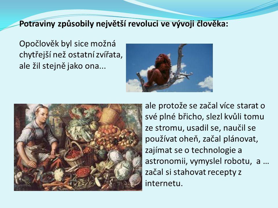 Potraviny způsobily největší revoluci ve vývoji člověka: Opočlověk byl sice možná chytřejší než ostatní zvířata, ale žil stejně jako ona... ale protož
