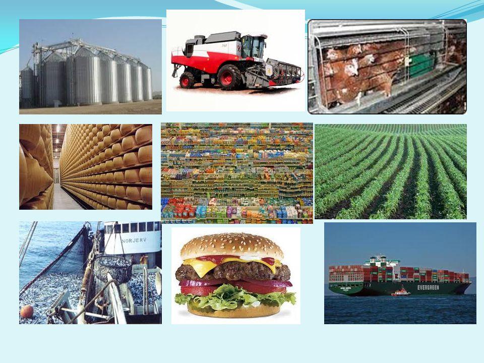 8.Otázka:Jaké byste raději kupovali potraviny?
