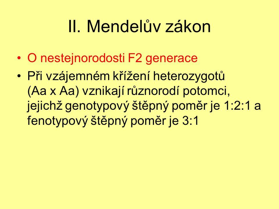 II. Mendelův zákon •O nestejnorodosti F2 generace •Při vzájemném křížení heterozygotů (Aa x Aa) vznikají různorodí potomci, jejichž genotypový štěpný