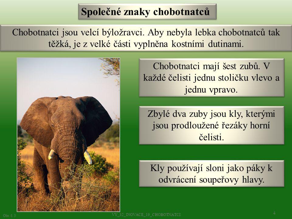 Chobot slouží k příjmu potravy a vody.