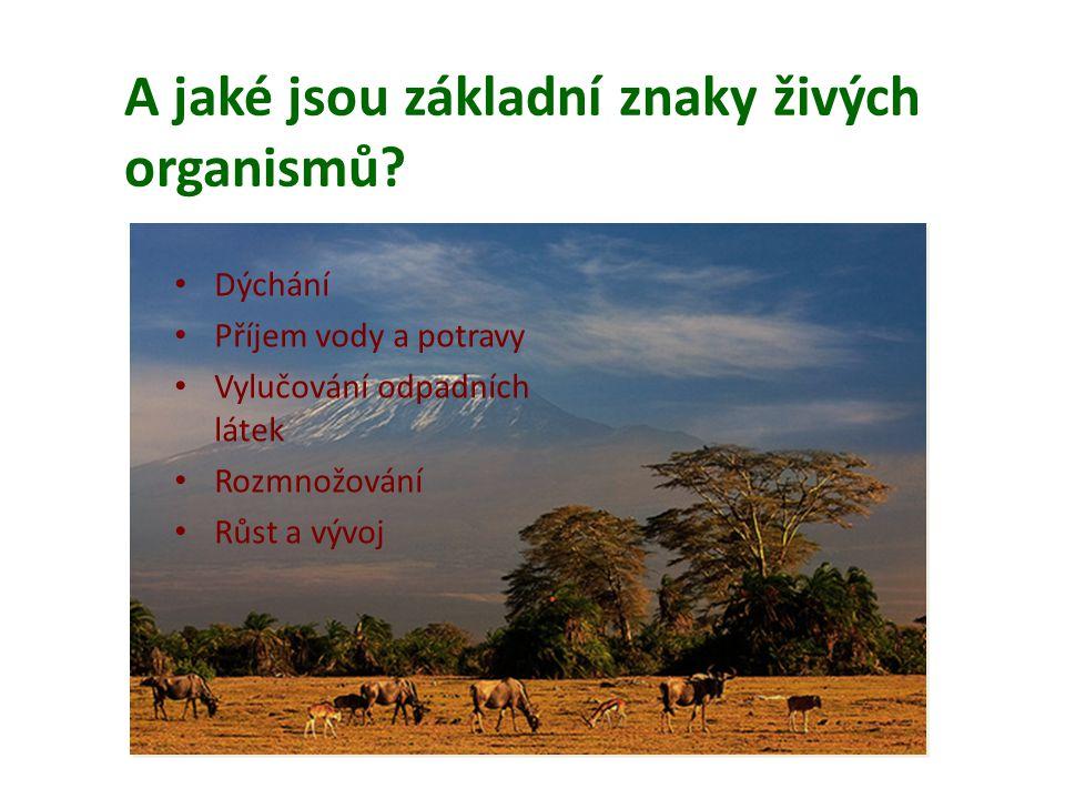 A jaké jsou základní znaky živých organismů? • Dýchání • Příjem vody a potravy • Vylučování odpadních látek • Rozmnožování • Růst a vývoj
