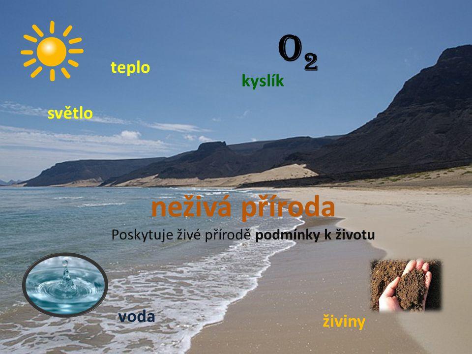neživá příroda Poskytuje živé přírodě podmínky k životu světlo teplo voda O2O2 kyslík živiny