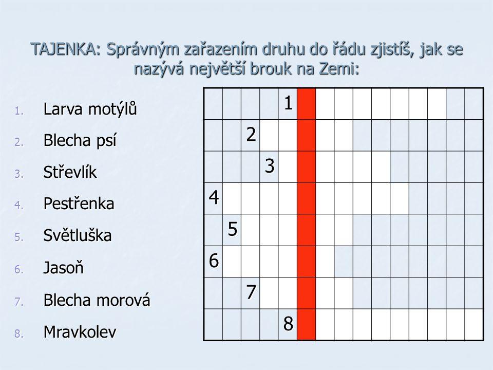 TAJENKA: Správným zařazením druhu do řádu zjistíš, jak se nazývá největší brouk na Zemi: 1. Larva motýlů 2. Blecha psí 3. Střevlík 4. Pestřenka 5. Svě