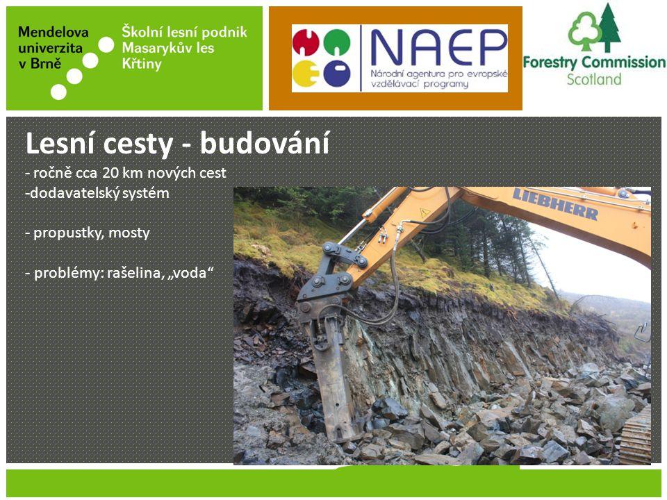 """Jméno Příjmení Název prezentace Lesní cesty - budování - ročně cca 20 km nových cest -dodavatelský systém - propustky, mosty - problémy: rašelina, """"voda"""