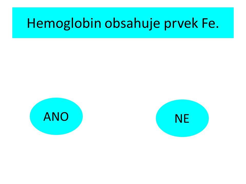 Hemoglobin obsahuje prvek Fe. ANO NE