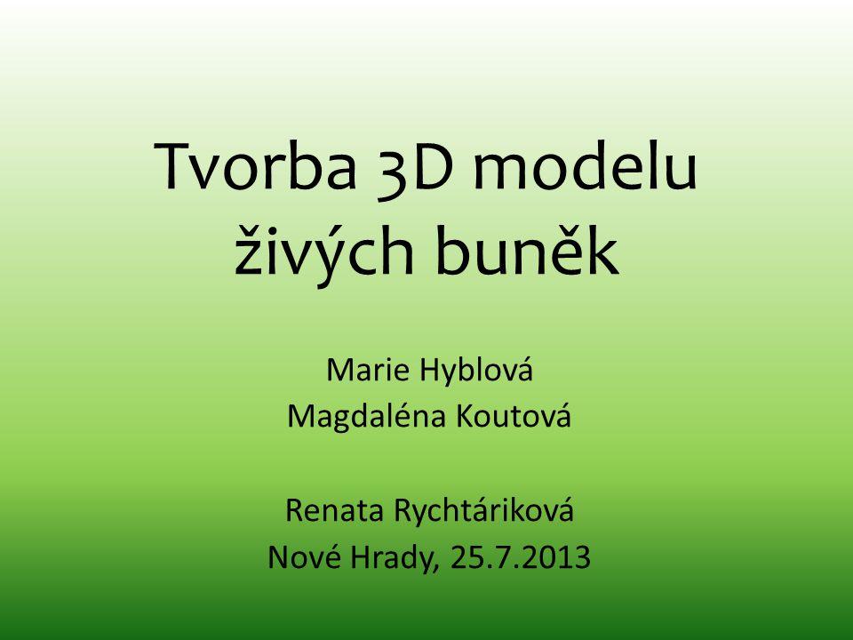 Tvorba 3D modelu živých buněk Marie Hyblová Magdaléna Koutová Renata Rychtáriková Nové Hrady, 25.7.2013