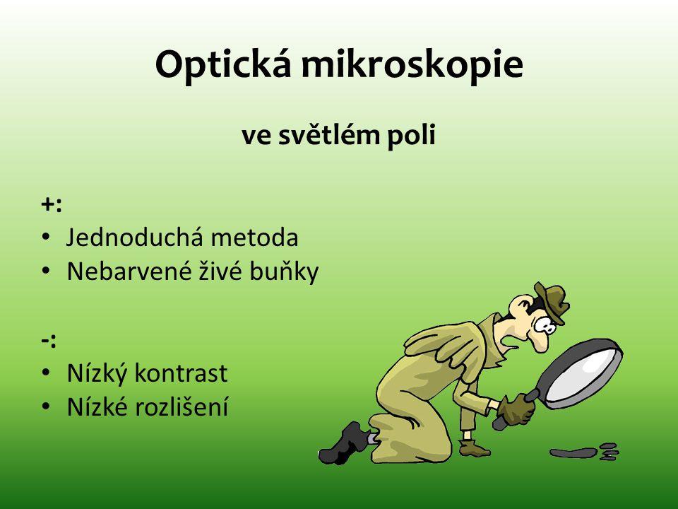 Optická mikroskopie ve světlém poli +: • Jednoduchá metoda • Nebarvené živé buňky -: • Nízký kontrast • Nízké rozlišení