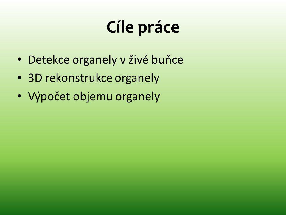 Cíle práce • Detekce organely v živé buňce • 3D rekonstrukce organely • Výpočet objemu organely